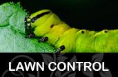 Lawn Control