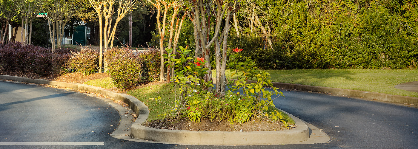Commercial landscaping myrtle beach lawn care for Landscaping rocks myrtle beach